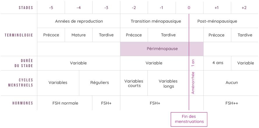 tableau activité des ovaires - secheresse-vaginale.fr