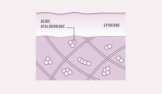 Acide hyaluronique vagin